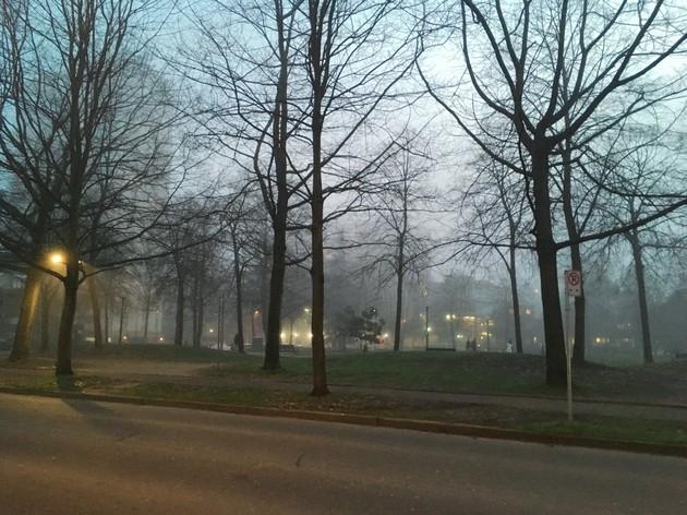 「フォグクーバー」!?霧で覆われたバンクーバー【カナダ・バンクーバー】